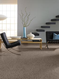 carpet flooring in owen sound